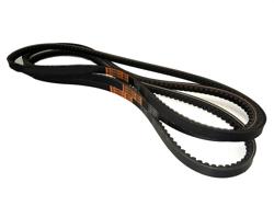 3 belts alce