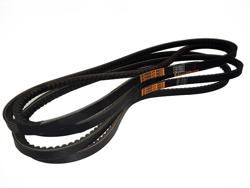 4 belts alce