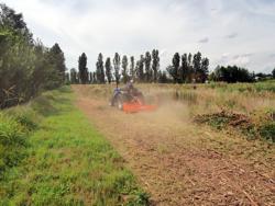 adjustable sideshift flail mower for medium sized tractors shredder mulcher mod tigre 160