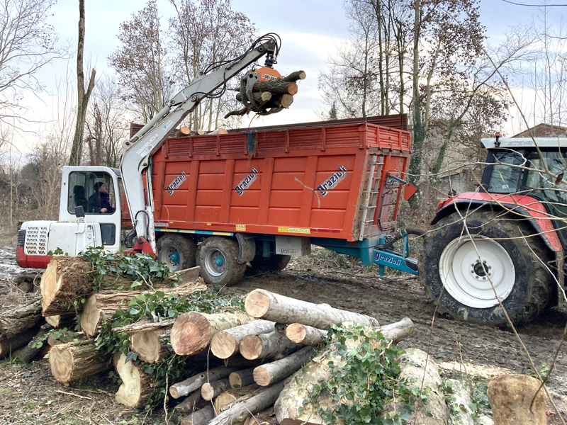 log-grapple-mini-diggers-forest-crane-or-manure-loading-dk-16